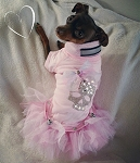 Light Pink Punk Crystal Skull Tshirt Tutu Dog Dress