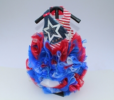 Patriotic Superstar Party Dog Dress