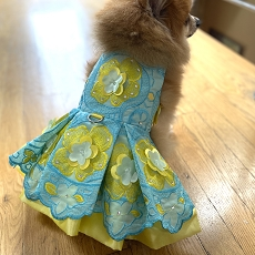 Spring Flowers Aqua and Yellow Dog Dress