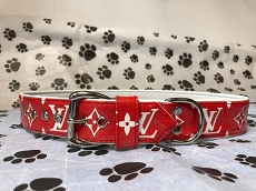 Limited Edition Fashion Red and White Dog Collar and Leash Set
