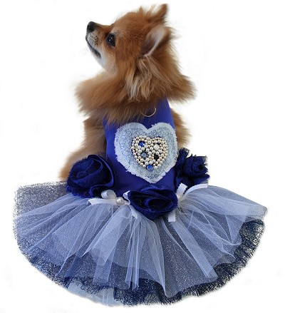 Blue Crush Swarovski Rose Dog Tutu Dress
