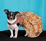All That Glitters Pink And Gold Sequin Party Dog Dress