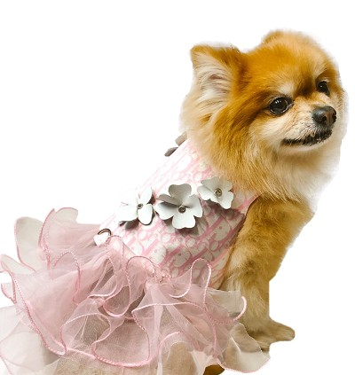J'adore Me Pink Princess Dog Dress