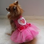 Love Hot Pink Swarovski Rose Tutu Dog Dress