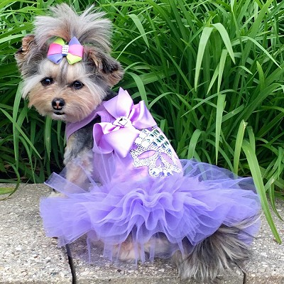 Violet Crystal Skull T-Shirt Tutu Dog Dress