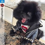 Meghan Trainor Lips Are Movin Studded Dog Black Leather Moto Jacket