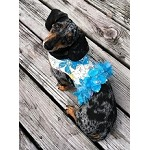 Ocean Blue Tropical Flower Dog Harness