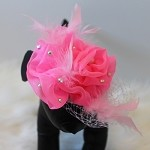 Hot Pink Swarovski Rose Fascinator