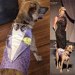 Fashion Show Runway Piece Lavender Glitz & Glam Harness Vest Size L/XL